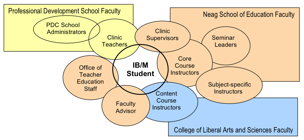 The Teaching-Learning-Support Team Model